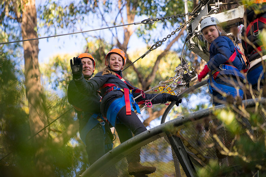 Hollybank Treetops Adventure – Tourism Tasmania & Rob Burnett